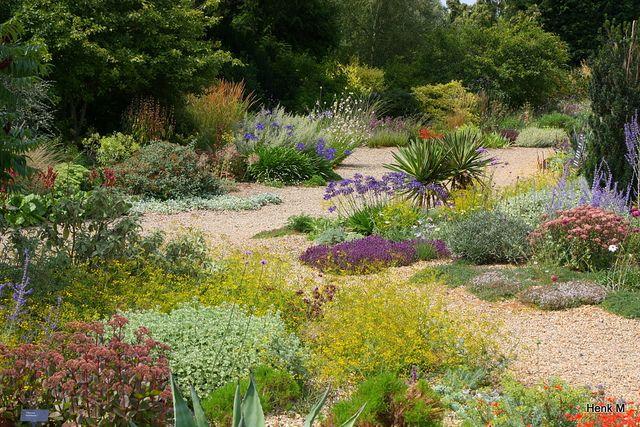 Beth Chatto Dry Garden Beth Chatto Gardens Plants