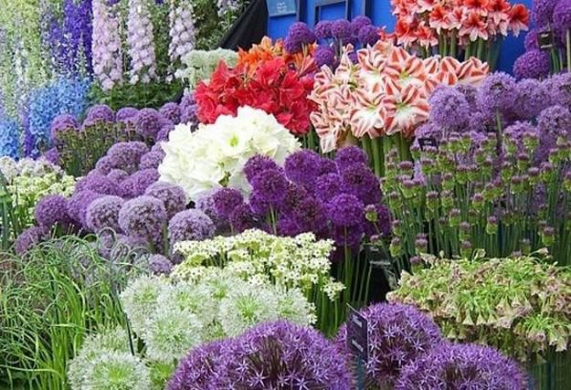 33 beautiful flower beds adding bright centerpieces to yard landscapi - Beautiful flower bed ideas ...