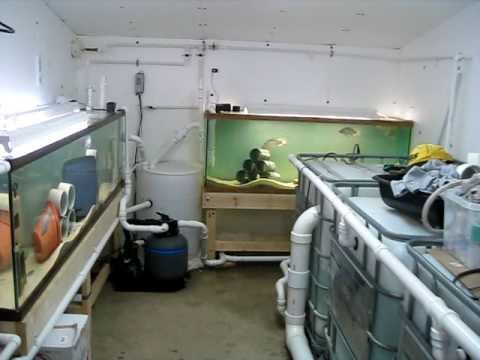 how to start a small scale fish farm
