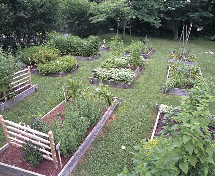 Raised Herb Garden Design Photograph Culinary herbs thrive