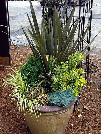 Greens container gardening pinterest for Perennial container garden designs