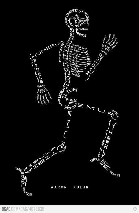 bones, bones, bones