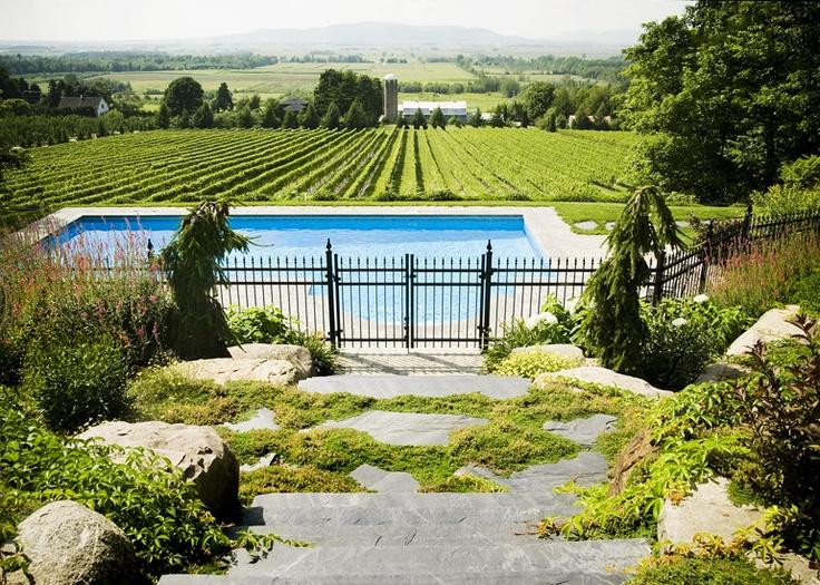 Am nagement paysager piscine et spa piscines pinterest for Amenagement piscine