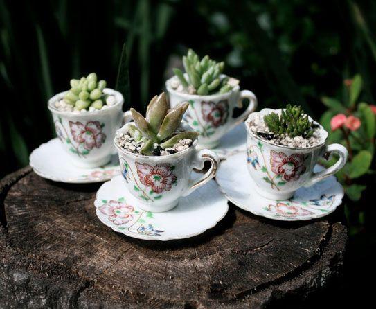 Planter 1   Tea and Sympathy   Pinterest