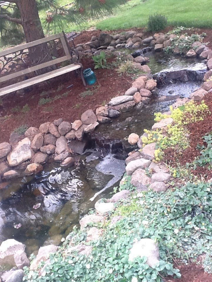 Small creek in backyard with koi fish for the home for Small creek fishing