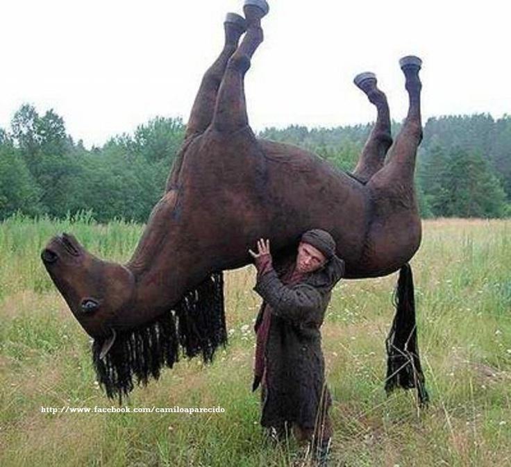 Tirando o cavalo da chuva