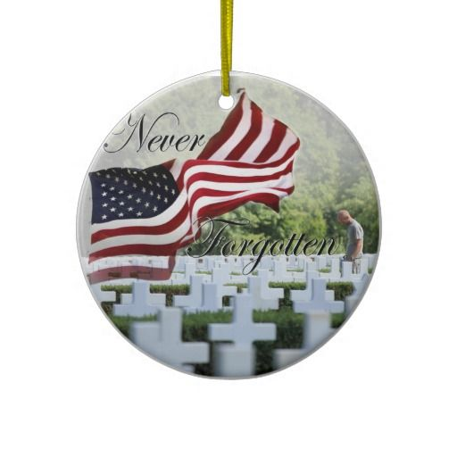 memorial day veterans day meme