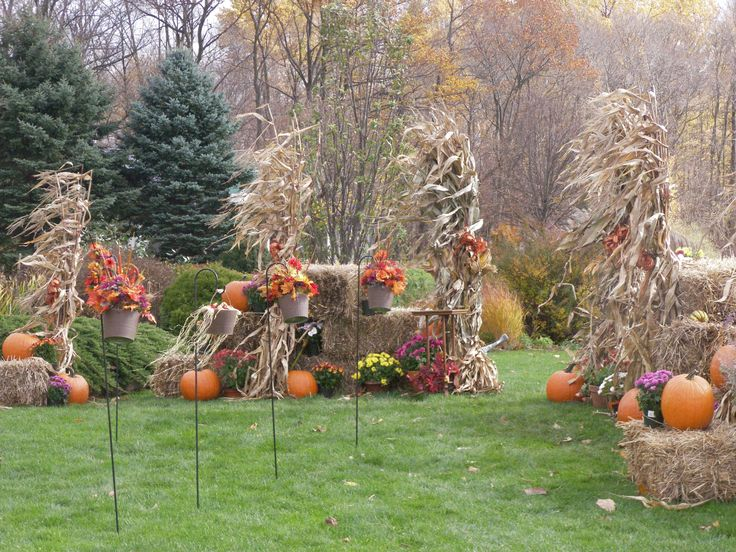 fall outdoor wedding outside weddings pinterest