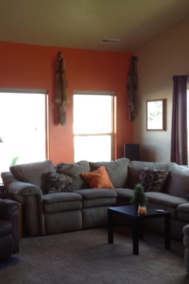 Orange Accent Wall Living Room Pinterest