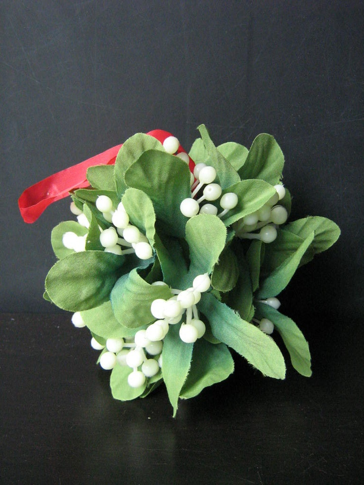 Mistletoe Kissing Ball | holiday crafts | Pinterest