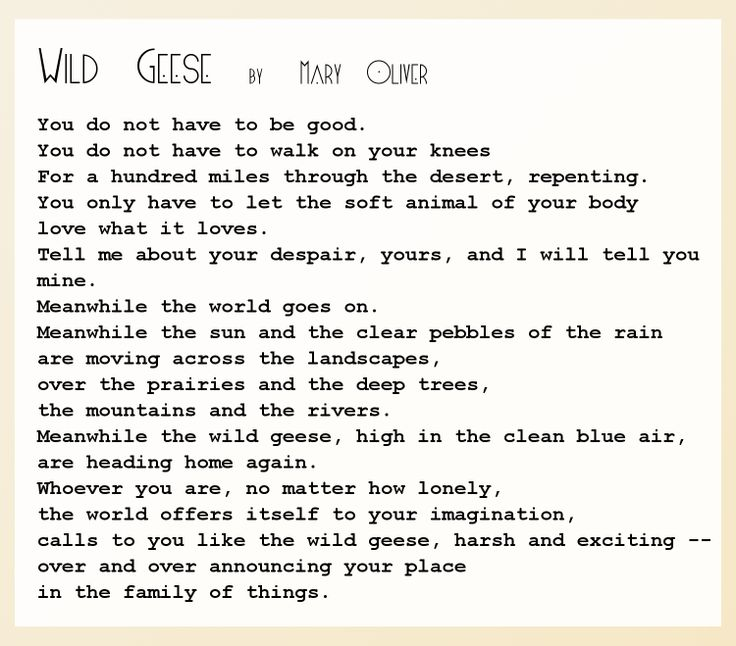wild geese mary oliver essay Thoughts on reading mary oliver wild geese in her essay owls she says there is only one world.
