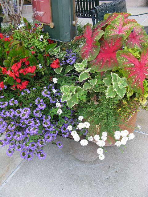 garden container ideas | Outdoor Living | Pinterest
