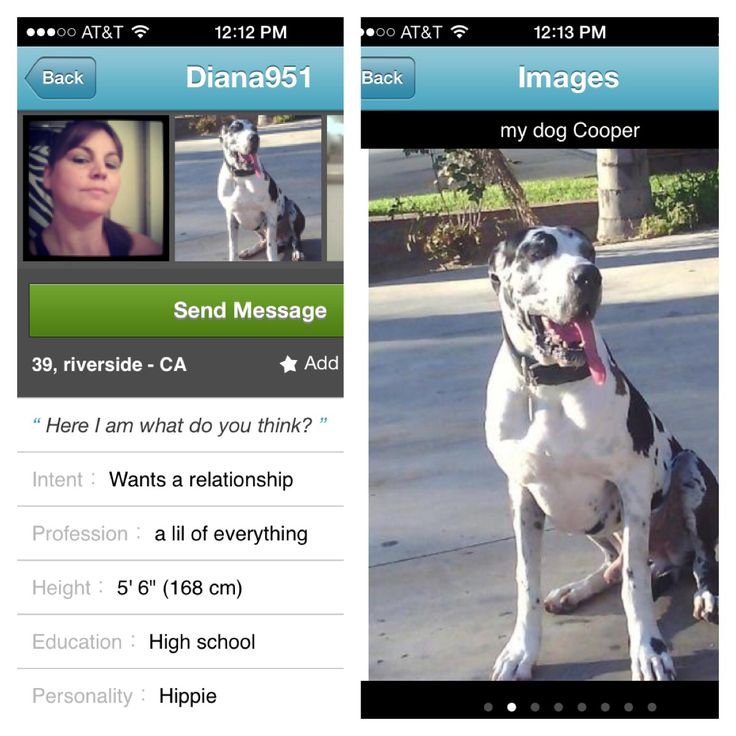 Pof dating site profiles