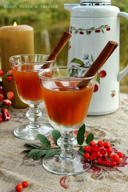 Hot spiced apple cider | Boozy Hot Drinks | Pinterest