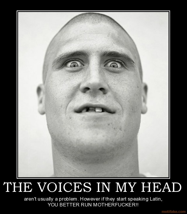 The voices in my head | Funny posters - 91.3KB