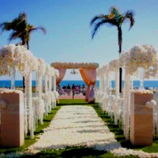 Superb Wedding Picture Ideas #1: Beef49b1a33fa685d4bd6d02d7ac313c.jpg