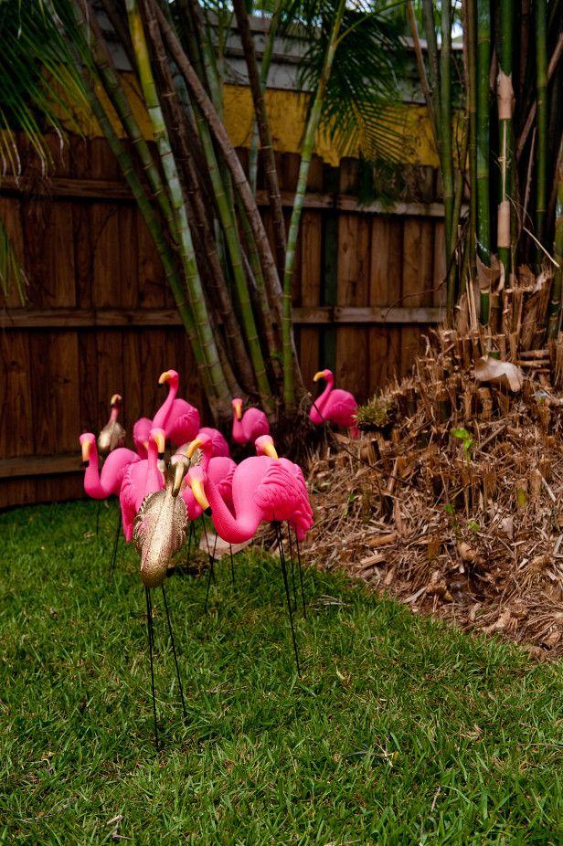 Tropical Garden Party  Backyard Entertainment & Dining  Pinterest