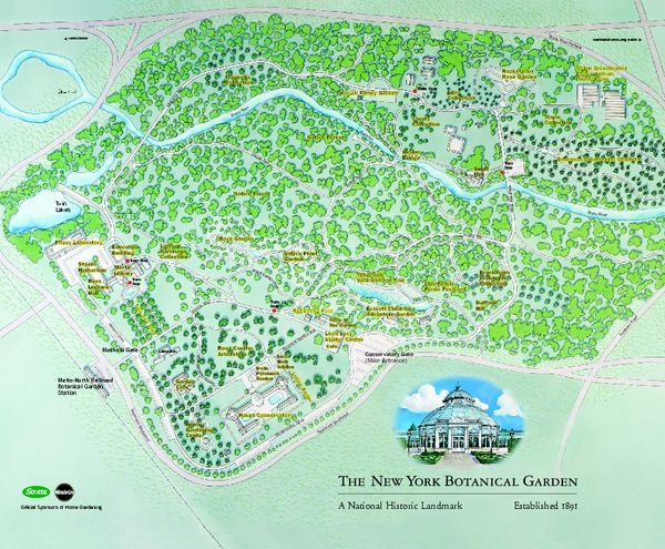 The Ny Botanical Garden Was Established In 1891 In The