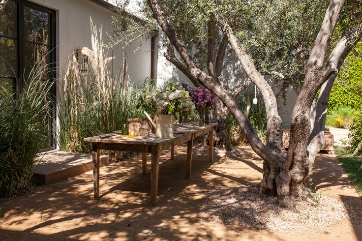 Floral Arrangements with Bloom  amp  Plume  LilacsLainie Sorkin