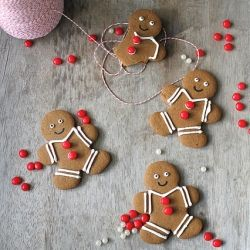 Gingerbread cookies with royal icing | GINGERBREAD House | Pinterest