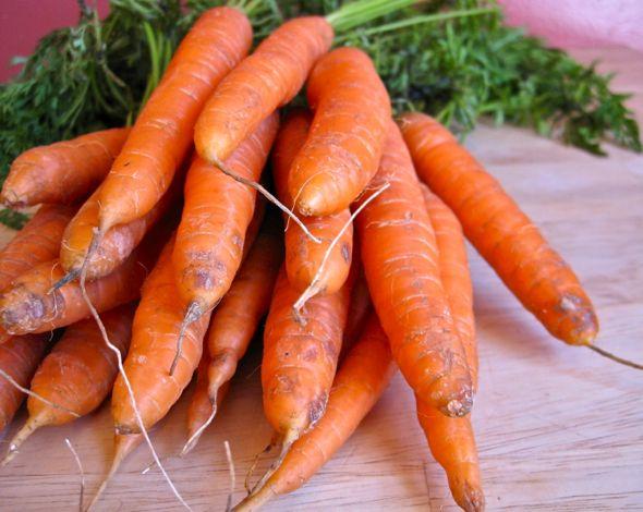 Yummy carrot recipes!