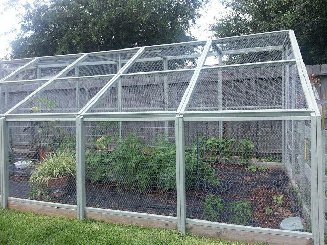 Enclosed garden gardening pinterest for Enclosed vegetable garden designs