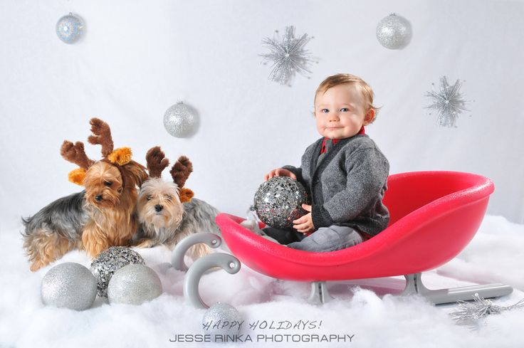 My son Alessio by Jesse Rinka on 500px. Kids Christmas card photo idea. Family dogs included!
