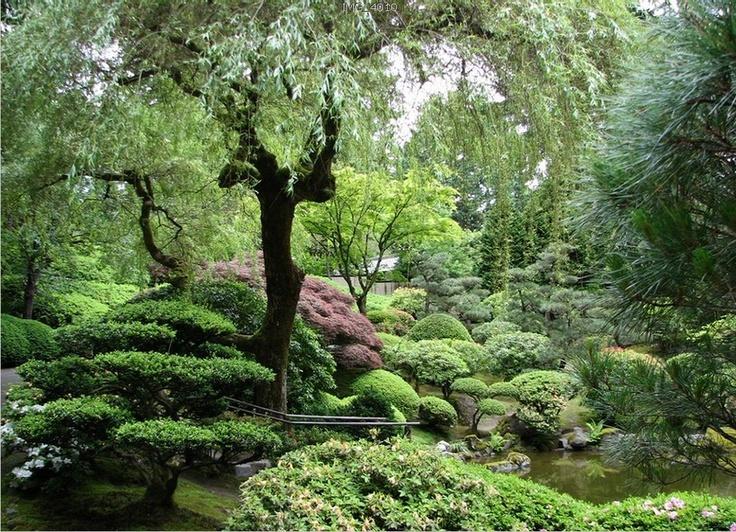 Japanese Garden Beautiful Pinterest