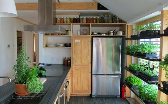 Grow your herb garden right in the kitchen ... terrific idea.