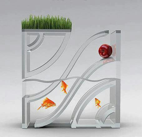 Weird fish tank Aquatic Tanks & Ponds Pinterest