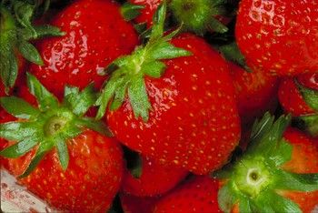 ... strawberry recipes ( i pinned for the Strawberry Sour cream bread