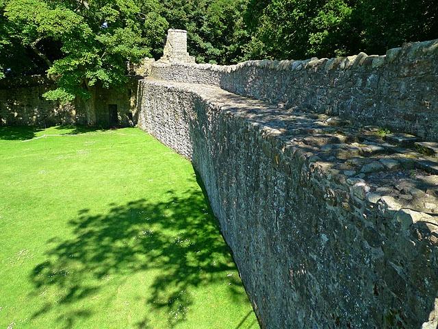 Lochleven Castle curtain wall | Scottish Castles | Pinterest