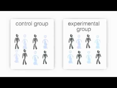 control group psychology Flashcards and Study Sets | Quizlet
