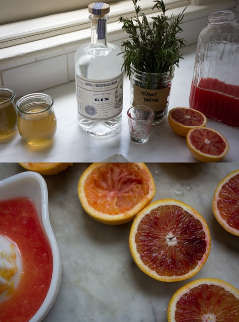Blood Orange Gin Sparkler > from 101cookbooks.com