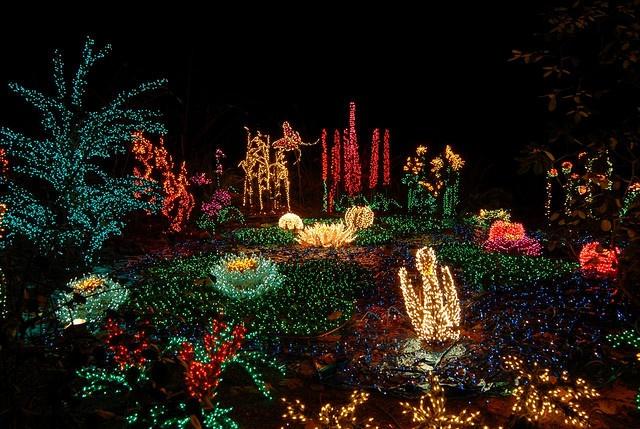 Garden D'lights Bellevue, WA