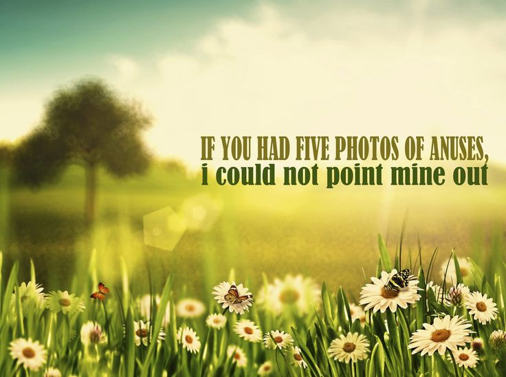 If Karl Pilkington's Quotes Were Motivational Posters omg I can't sto...