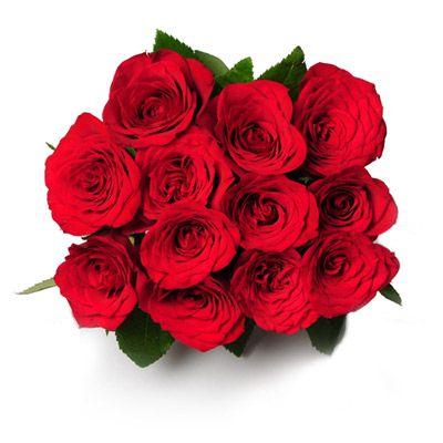 valentine gifts n flowers