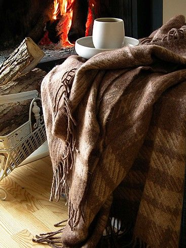 cozy blanket, warm fire, coffee...just add a good book and crack the window on a perfect autumn day