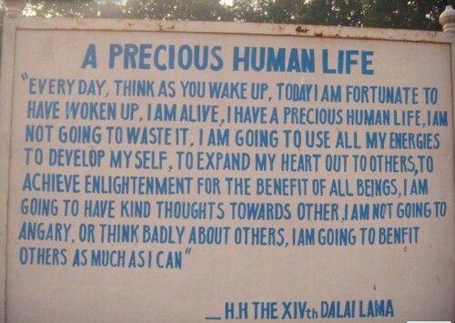 precious human life | ...