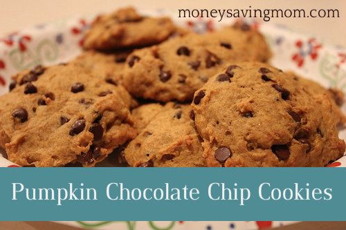 chip muffins pumpkin chocolate chip muffins chocolate chip pumpkin ...