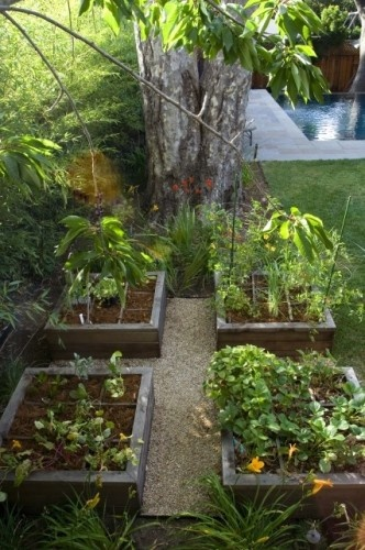Four square grid garden by Shades of Green Landscape Architecture