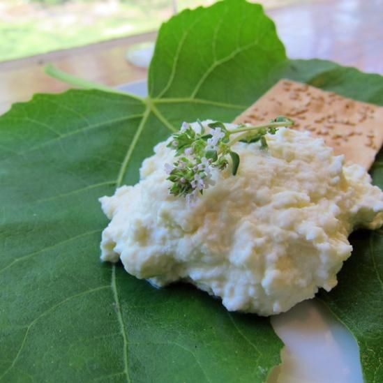 Homemade Ricotta | cheesemaking and other homemade dairy foods | Pint ...