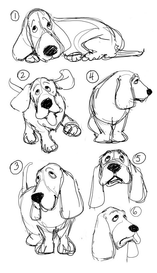 dog basset coloring pages - photo#34