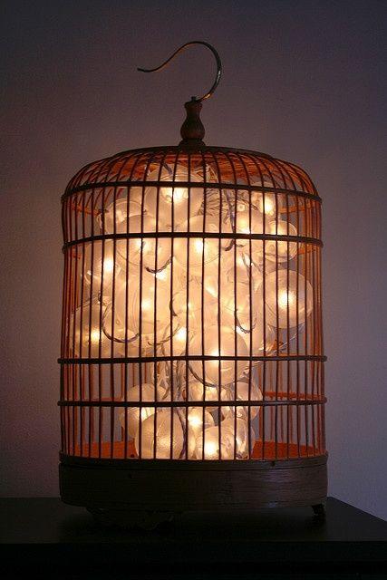 Bird Cage lights Big Wall Ideas Pinterest