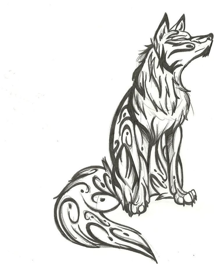 Tribal Wolf Drawing. |...