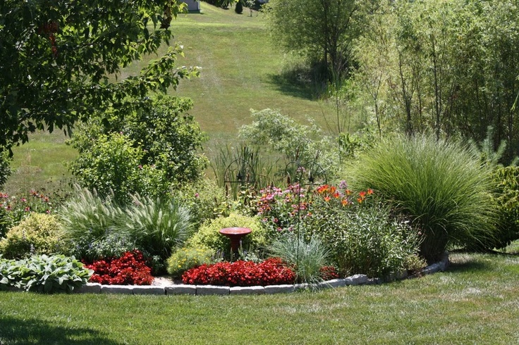 Perennial garden with ornamental grass ornamental grass for Ornamental grass front yard