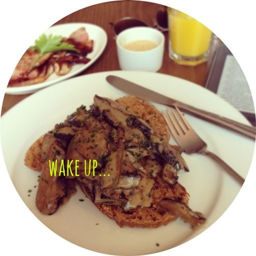 what // sourdough toast with creamy garlic mushrooms & chives, with a ...