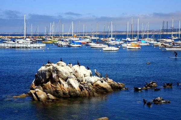 international tourism opinion essay