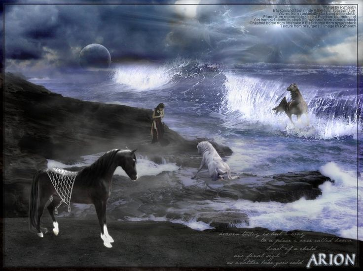 Arion Horse Percy Jackson