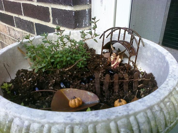 Container Fairy Gardens Jugs Pinterest